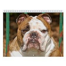 "Bulldog Wall Calendar ""G"""