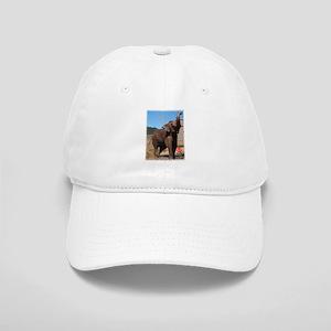 Nicholas the Bull Elephant Cap