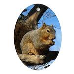 Squirrel in Autumn Oval Ornament