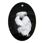 Napping Swan Oval Ornament