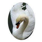 Tranquil Swan Oval Ornament