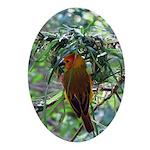 Saffron Finch Oval Ornament