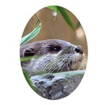 Resting Otter Oval Ornament