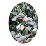 Snowy Holly Oval Ornament