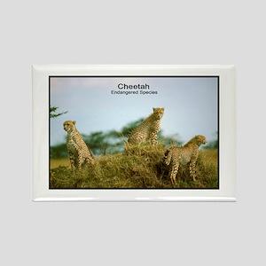Cheetah Wildcat Photo Rectangle Magnet