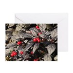Black Pearl Peppers Horizontal Greeting Cards (10)