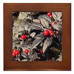 Black Pearl Peppers Framed Tile