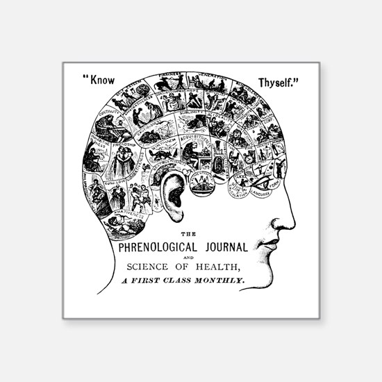 know thyself phrenology head Sticker