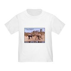African Elephants Photo T