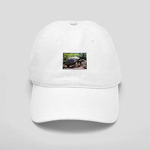 Galapagos Giant Tortoise Photo Cap