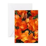 Orange Tulips Vertical Greeting Card