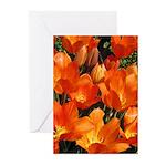 Orange Tulips Vertical Greeting Cards (10)
