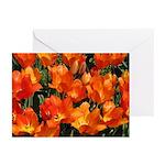 Orange Tulips Horizontal Greeting Cards (10)