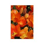 Orange Tulips Vertical Magnet