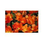 Orange Tulips Horizontal Magnet