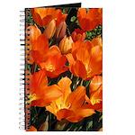 Orange Tulips Journal