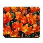 Orange Tulips Mousepad