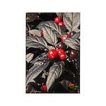 Black Pearl Peppers Vertical Magnet