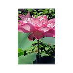 Pink Lotus Vertical Magnet