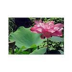 Pink Lotus Horizontal Magnet
