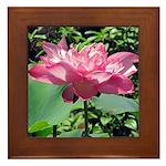 Pink Lotus Framed Tile