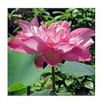 Pink Lotus Tile Coaster