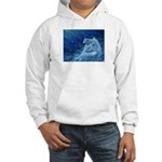 Star Lion Hooded Sweatshirt