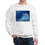 Star Lion Sweatshirt