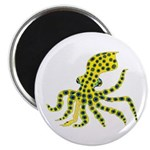 Blue Ringed Octopus Magnets