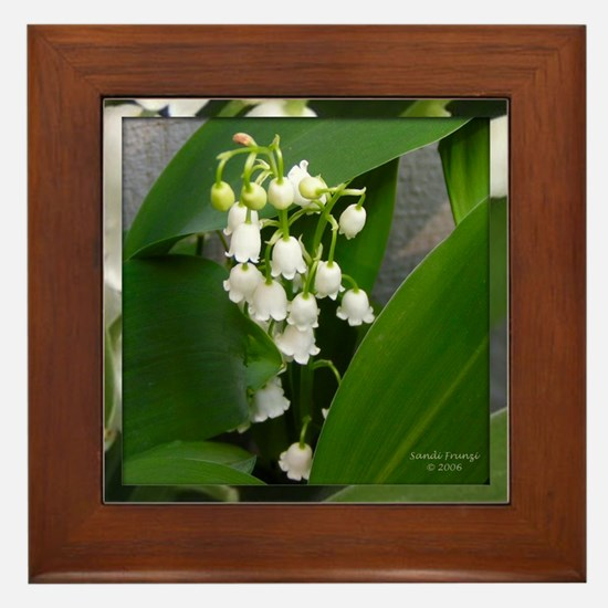 Lily of the Valley Framed Tile