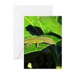 Green Anole on Leaf Vertical Greeting Cards (10)