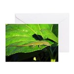Green Anole on Leaf Horizontal Greeting Cards (10)