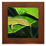 Green Anole on Leaf Framed Tile
