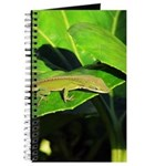 Green Anole on Leaf Journal