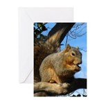 Squirrel in Autumn Vertical Greeting Cards (10)