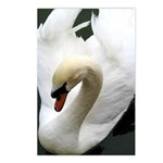 Tranquil Swan Vertical Postcards (8)