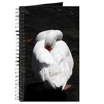 Napping Swan Journal