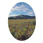 Mountain Field Oval Ornament