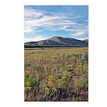 Mountain Field Vertical Postcards (8)
