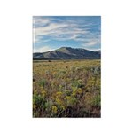 Mountain Field Vertical Magnets (100)