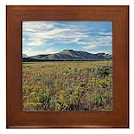 Mountain Field Framed Tile