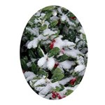 Snowy Holly Oval Ornament