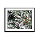 Snowy Holly Framed Panel Print