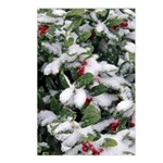 Snowy Holly Vertical Postcards (8)