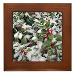 Snowy Holly Framed Tile