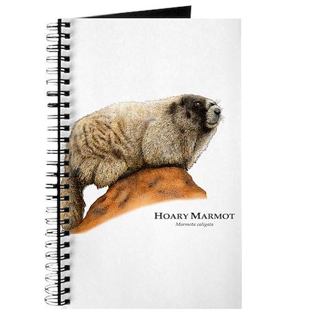Hoary Marmot Journal