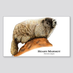Hoary Marmot Sticker (Rectangle)