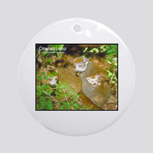 Crowned Lemur Photo Ornament (Round)