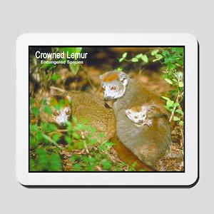 Crowned Lemur Photo Mousepad