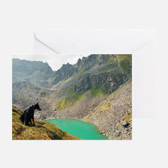 Photographers Aide Greeting Cards (Pk of 10)